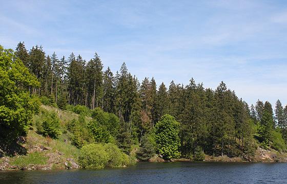 Kamptalstausee - Waldviertel: Erholungsgebiet, NÖ