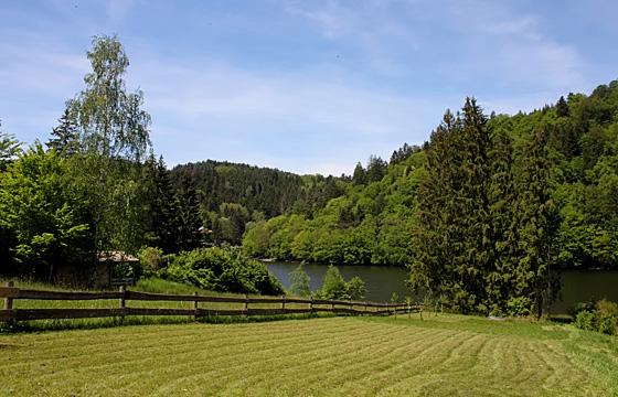 Waldviertel - Niederösterreich