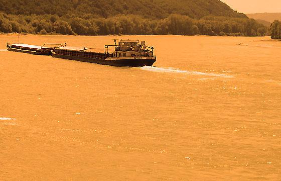 Wachau bei Donau: Schubverband in Abendsonne